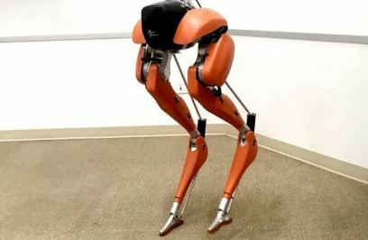 Un robot enseña a andar a otros robots